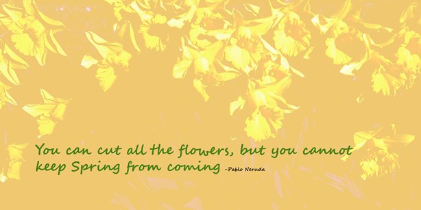 Spring quote sized