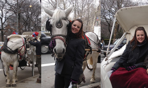 Carriage ride in NYC